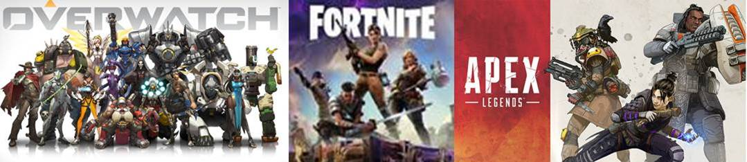 Online gaming, fortnite party in Baltimore and Frederick County, MD